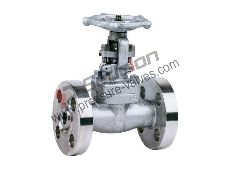 China Stainless Steel Forged Gate Valve Manufacturer