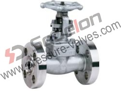 Stainless Steel Forged Gate Valve